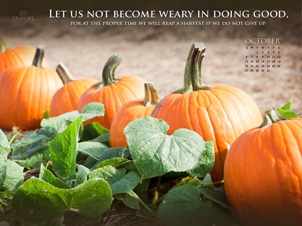 Oct 2013 - Galatians 6:9