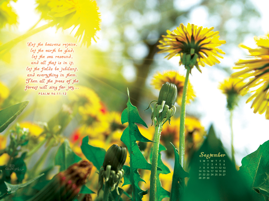 Sept 2014 - Psalm 96:11-12