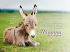 April 2014 - Hosanna