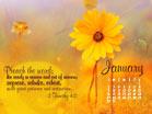 January 2011 - 2 Timothy 4:2