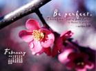 February 2011 - Matthew 5:8