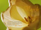 March 2010 - John 11:25-26 - Wallpaper