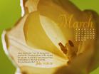 March 2010 - John 11:25-26