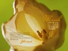 March 2011 - John 11:25-26