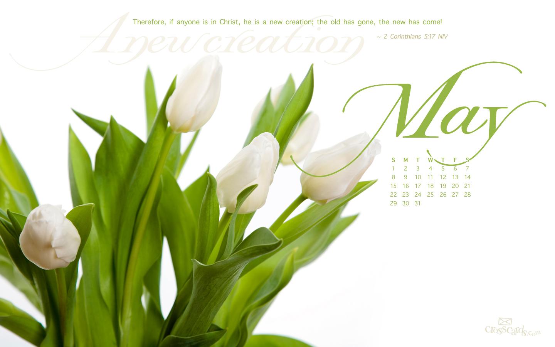 May 2011 - New Creation
