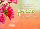 May 2011 - Jeremiah 29:11
