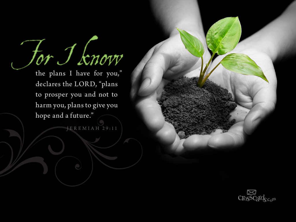 I Know the Plans Desktop Wallpaper - Free Scripture Verses Backgrounds