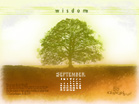 September 2010 - Wisdom - Wallpaper
