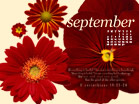 September 2010 - Lawful - Wallpaper