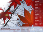 Autumn 2010 - Wallpaper