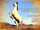 November 2010 - Psalm 147:10-11