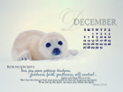 December 2010 - Seal