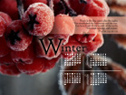 Winter 2009 - Wallpaper