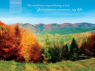 Oct 2013 - Psalm 119:50