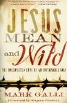 "Author Looks Beyond the Nice in ""Jesus Mean and Wild"""