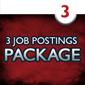 3 Job Postings (1 month each)