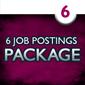 6 Job Postings (1 month each)
