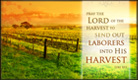 Autumn Harvest - Ecard