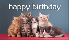 Birthday Kittens - Ecard