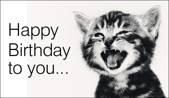 Geeky image in free printable cat birthday cards