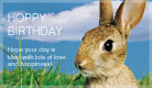 Hoppy Birthday - Ecard