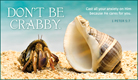 Don't Be Crabby - Ecard