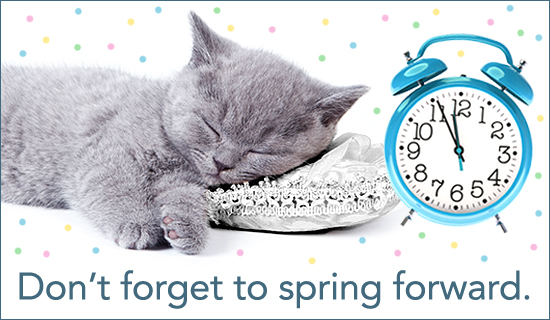 Daylight Savings Time Funny Quotes: Spring Forward Funny Quotes. QuotesGram