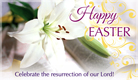 Easter Lily - Ecard