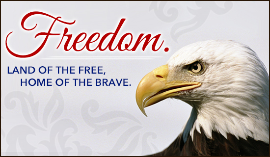 Freedom - Wallpaper