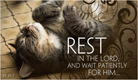 Rest in the Lord - Ecard