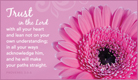 Trust in the Lord - Ecard