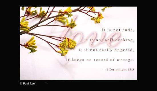 Love Is Not . . .