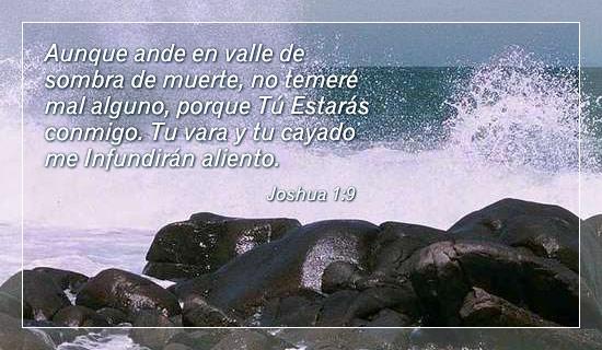 Psalms 23:4