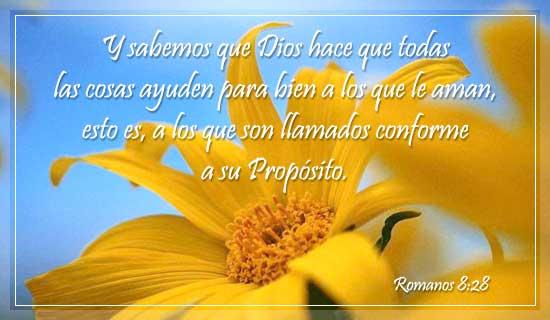 Romanos 8:28