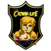 Crown of Life Junior Comics