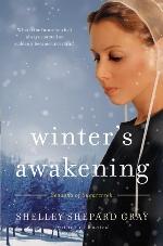 Winter's Awakening (Seasons of Sugarcreek #1)