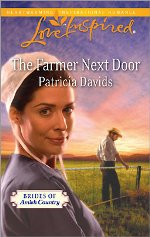 The Farmer Next Door (Brides of Amish Country #4)