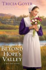 Beyond Hope's Valley (Big Sky #3)