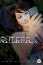 Enticed: A Dangerous Connection (Secrets)