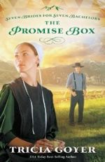 Q&A:  Tricia Goyer (The Promise Box)