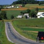 Amish Living: Gather Together