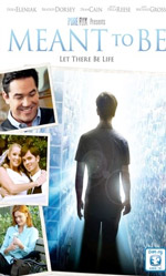 'Meant to Be' Movie: Value of Life