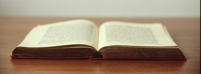 Answer a Question -- Win a Novel!