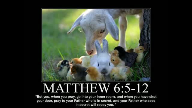 Animal Themed Motivational Posters of Bible Scripture 2 ...
