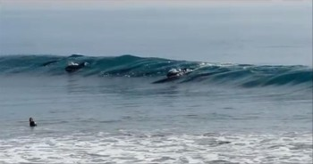 Pod of Dolphins Swim with Surfers--Amazing!