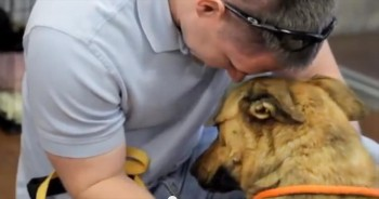 You Can FEEL the Love When This Sweet Dog is Reunited with