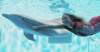 Dolphin Tale 2 - Official Trailer
