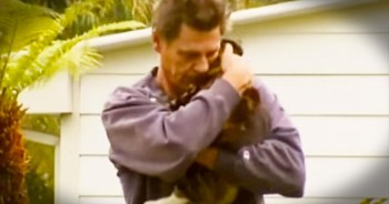 When Her House Was On Fire, This Kitty Did Something HEROIC – And I'm In Complete Shock!