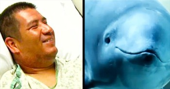 God Gave This Porpoise A PURPOSE – And 1 Man Is Forever Thankful