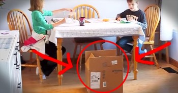 These 2 Kids Are SO Happy And All Because Of 1 Box. This Gets 4 PAWS Up!